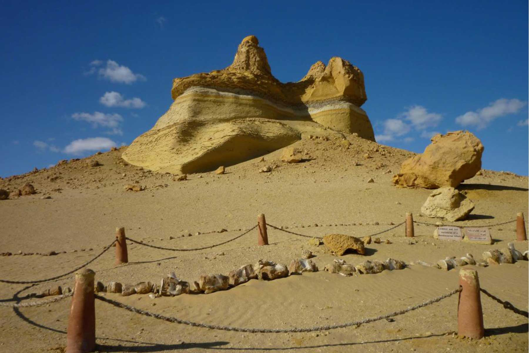 Things to do in fayoum Egypt