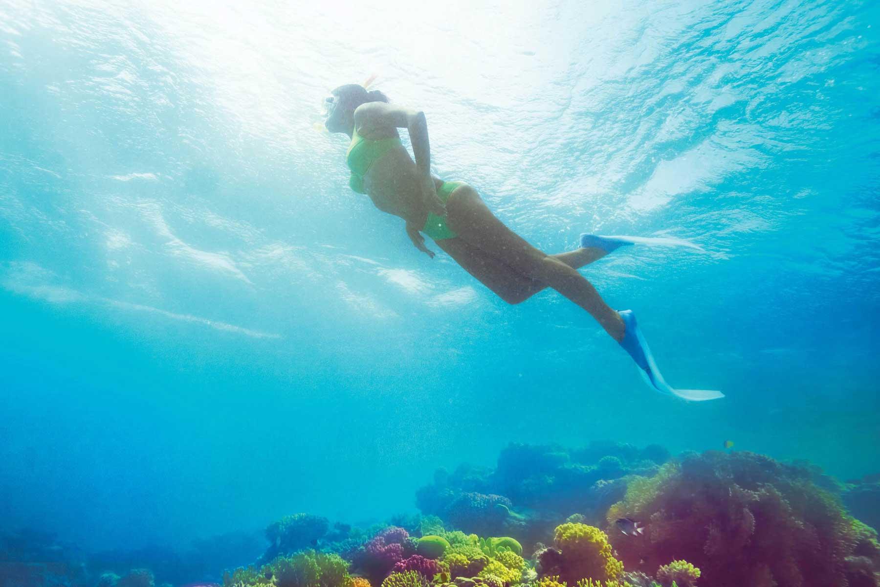 Diving sharm el sheikh